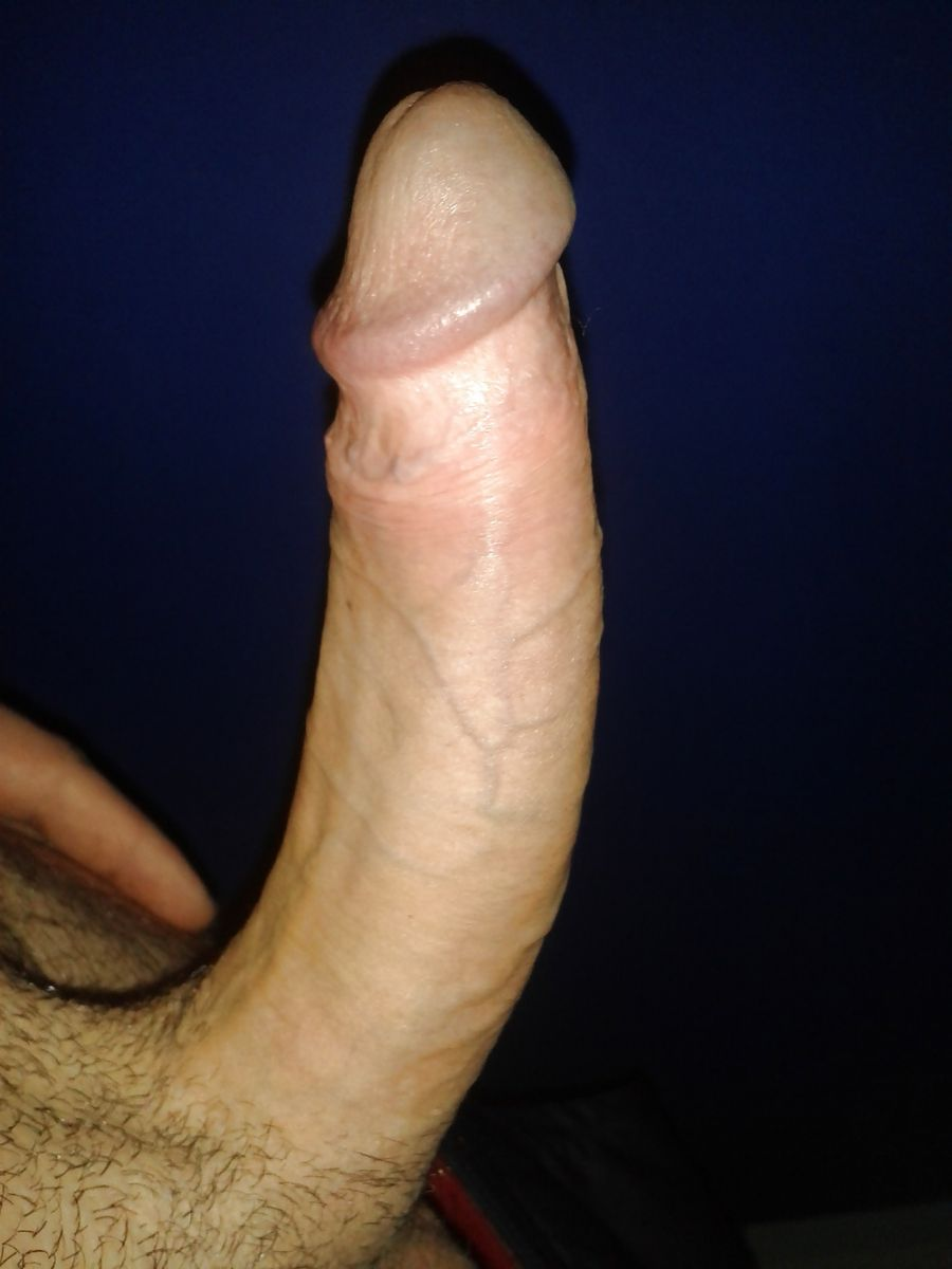 gay en erection bite sex gay